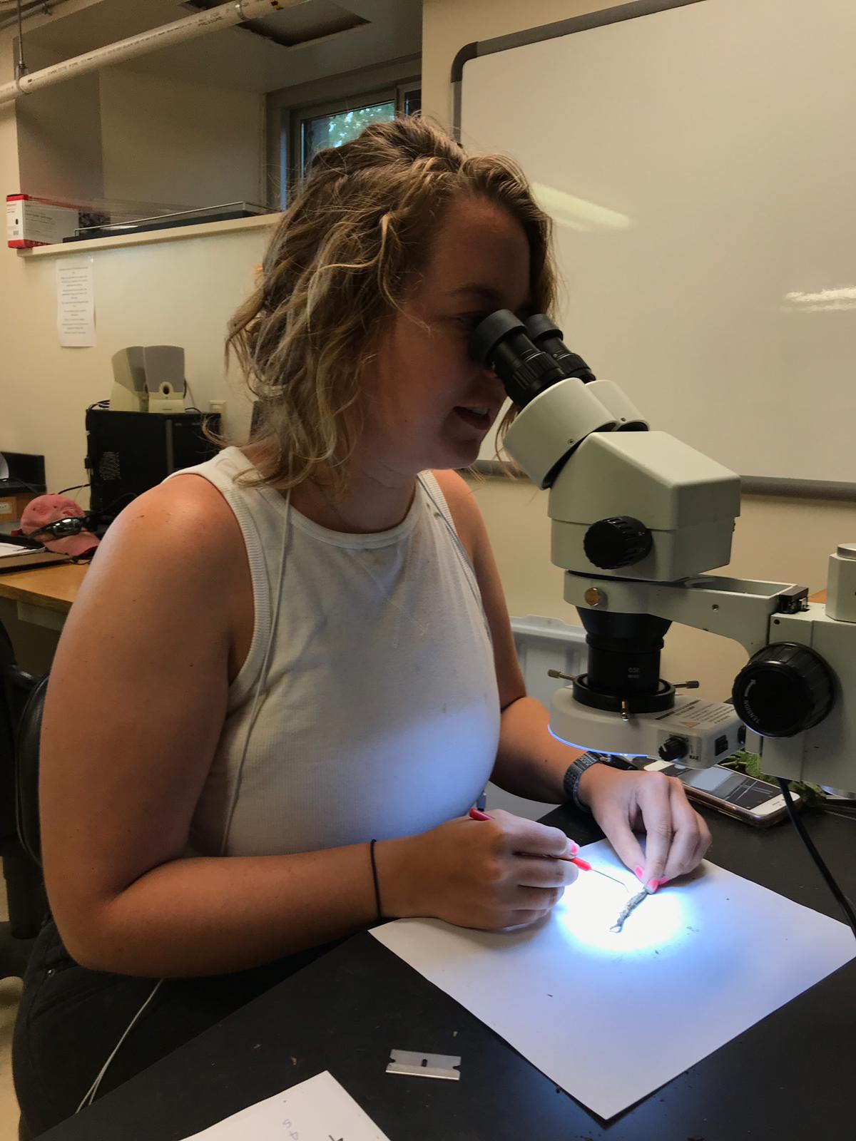 Amy Hauver using a microscope